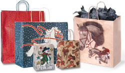 Small/Medium/Large Shopping Bag Combo Pack